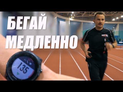 Хотите бегать быстро? 💨 Учитесь бегать медленно! 🐢