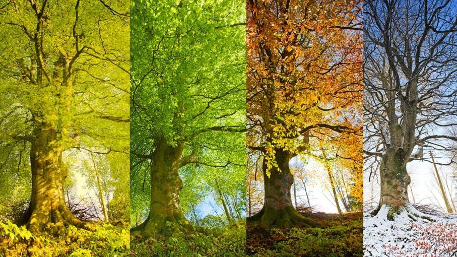 Сезоны сместились: Лето подвинулось для осени