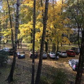 Красивая осень