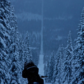 Шведско-норвежская граница