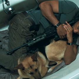 Момент из фильма Я – Легенда (2007): Сильная сцена в ванной