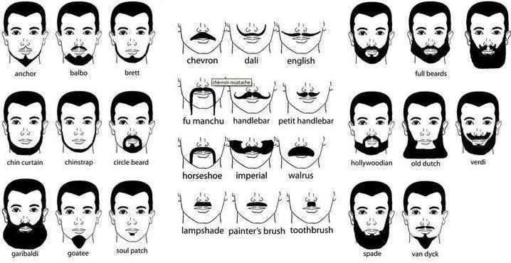 Как стричь бороду в домашних условиях? Чем стричь? Какую бритву выбрать? Виды бороды. Полная инструкция